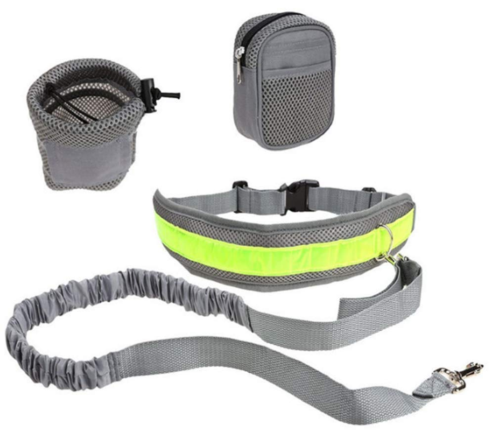 ZPEM Running Dog Walking Belt Reflective with Double Sided Lined with Waist Bag Strong Bungee Duralble Luminous Ajustable Leash Waist Dog Hands Free Leads,Gray