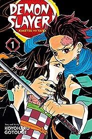 Demon Slayer: Kimetsu no Yaiba, Vol. 1: Volume 1