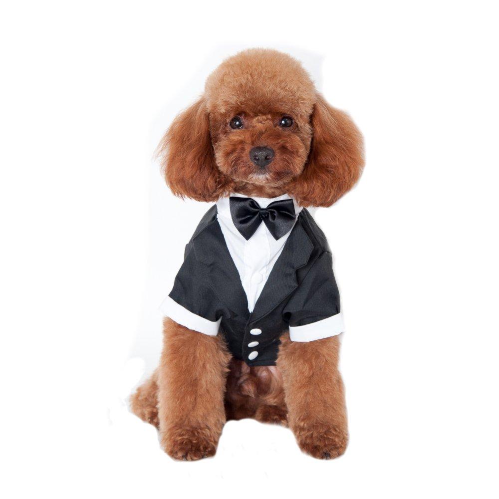Keysui pour chien Pet chiot vêtements Smoking pour homme pour nœud papillon élégant mariage Apparel