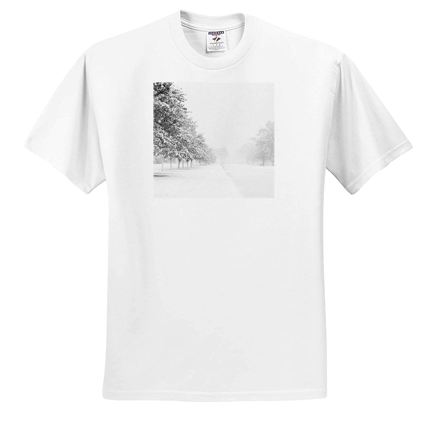 3dRose Stamp City Winter - T-Shirts Photograph of a Road Lined with Trees with Freshly Fallen Snow