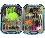 Best Salmon Flies - JSHANMEI 62Pcs/Box Wet And Dry Fly Fishing Flies Review