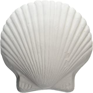 2 Pack Search For Flights Weco Wonder Shell Natural Minerals Cleaning & Maintenance