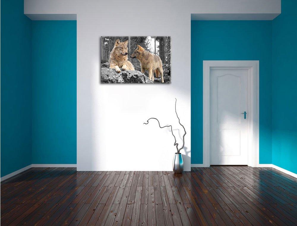 Pixxprint Loups dans Les Bois/Art Toile 60x40cm Murale XXL