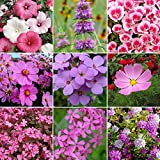 Pretty in Pink - Exclusive Pink Wildflower Seed Mix - 10 Pounds, Pink