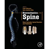 Biomechanics of the Spine: Basic Concepts, Spinal Disorders and Treatments