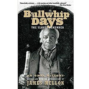 Bullwhip Days Audiobook