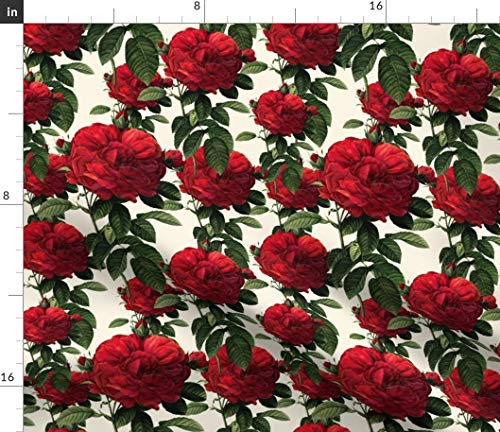 Redoute Fabric - Roses Floral Botanical Flower Cream Queen Anne S Lace by Peacoquettedesigns Printed on Eco Canvas Fabric by The Yard