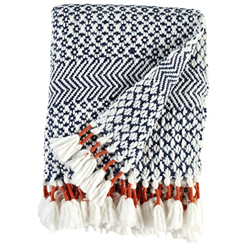 Purchase Rivet Modern Hand-Woven Adeline Stripe Fringe Throw Blanket