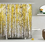 Ambesonne Forest Shower Curtain, Autumn Birch Forest Golden Yellow Leaves Woodland October Seasonal