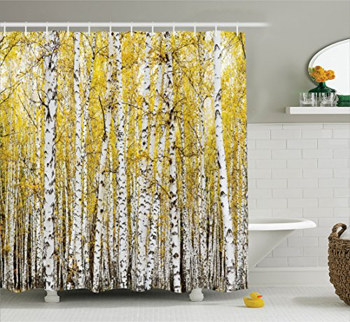 Farm House Decor Shower Curtain Set by Ambesonne, Autumn Birch Forest Golden Leaves Woodland October Seasonal Nature Picture, Bathroom Accessories, 84 Inches Extralong, Yellow Grey