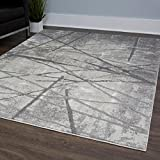 Home Dynamix Christian Siriano and Roma Cascade Area Rug | Monochromatic Color Palette, Abstract, Painterly Pattern | Modern Indoor Rug in Gray | Wonderful Texture, Excellent Resistance, 8′ x 10′ Review