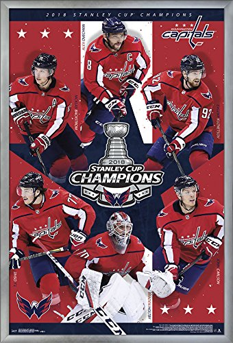 Trends International 2018 Stanley Cup - Washington Capitals Champions Wall Poster, 24.25