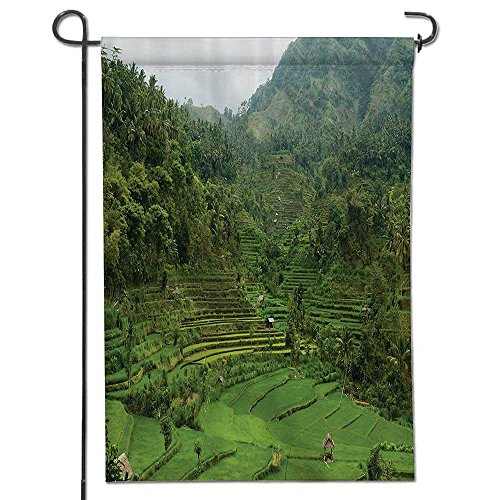 Cheap  Philiphome Nice Design Hello Summer Picture of Terraced Rice Paddies in Hillside..