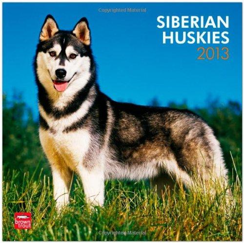 siberian-huskies-2013-sibirische-huskies-original-browntrout-kalender