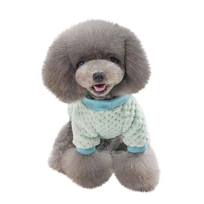 Amazon.com: UMFuns - Sudadera para perro, gato, cachorro o ...