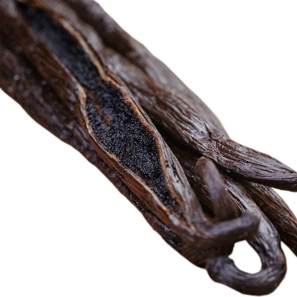Frijoles de vainilla (Tahitiano) grado B entero – Extracto – 4 a 6 pulgadas para extracto, horneado, café, elaboración de cerveza, cocina (10 vainas)