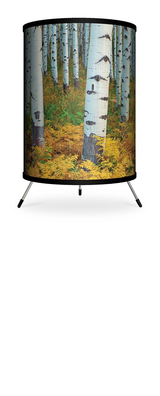 7 x 7 x 12 Lamp-In-A-Box TRI-FAR-ACCMP Featured Artist-Andy Cook Colorado Mcclure Pass Tripod Lamp