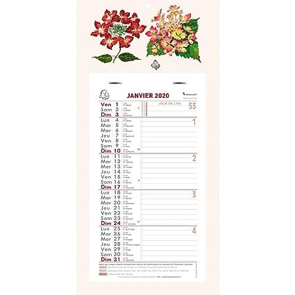 Calendrier Mois Janvier 2020.Exacompta 33215e Calendrier Mensuel Fleurs 16 X 33 Cm Janvier A Decembre 2020 Coloris Aleatoires