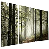 Design Art PT9835-3P Light In Dense Fall Forest with Fog - Landscape Canvas Art Print - 36x28in - Multipanel 3Piece,Green,36x28 3Piece