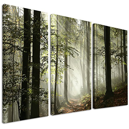 - Designart Light in Dense Fall Forest with Fog-Landscape Canvas Art Print-36x28in-Multipanel 3 Piece, 36x28-3 Panels, Green