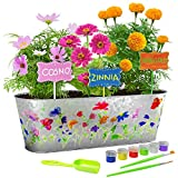 Paint & Plant Flower Growing Kit - Grow Cosmos, Zinnia, Marigold Flowers - Includes Everything Needed to Paint and Grow - Great Gift for Children STEM