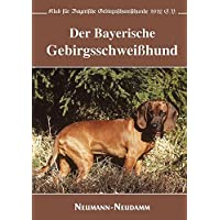 Der Bayerische Gebirgsschweißhund