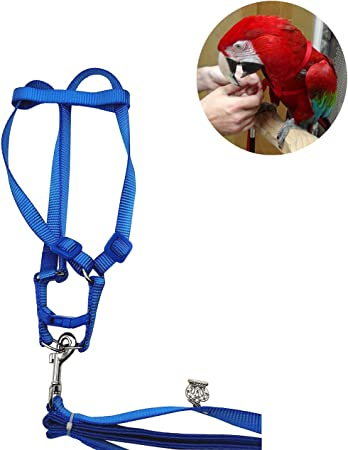 Bird Harness and Leash  Cockatoo Harness Safe Adjustable Nylon Anti-bite Training Hraness Outside Walk for Large Bird Parrot Macaw Color Random L