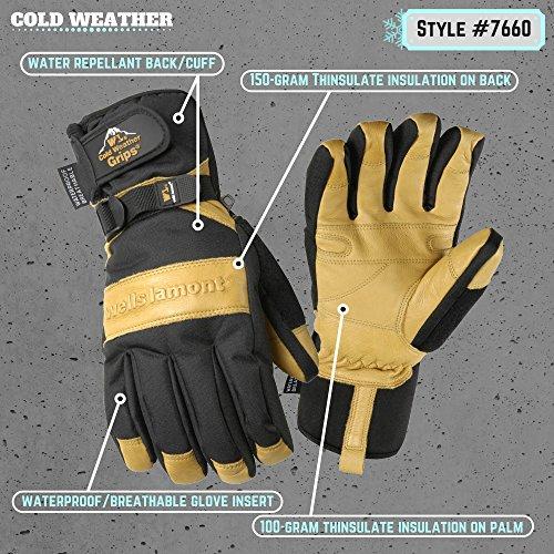 Buy wells lamont gloves winter