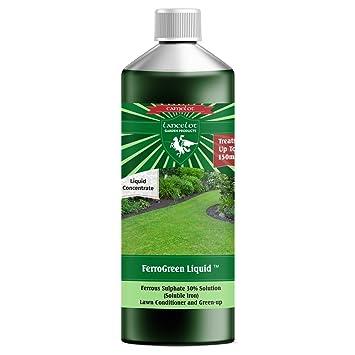 Solución de sulfato de hierro, de Lancelot, líquido, 30 % de líquido de sulfato de hierro, acondicionador, fertilizante de césped y eliminador de musgo: ...