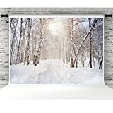 Winter Scenic Backdrops for Photographers 7x5 Vinyl Snowfall Holiday Background Photo Booth Props Party Decorations