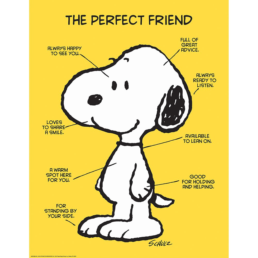 "Eureka Classroom Posters, Measures: 17"" x 22"" - Peanuts The Perfect Friend"