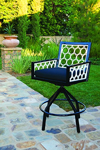 Parkview Cast Swivel Rocker, VOLT SPARK-Textured Black Frame (Parkview Cast)
