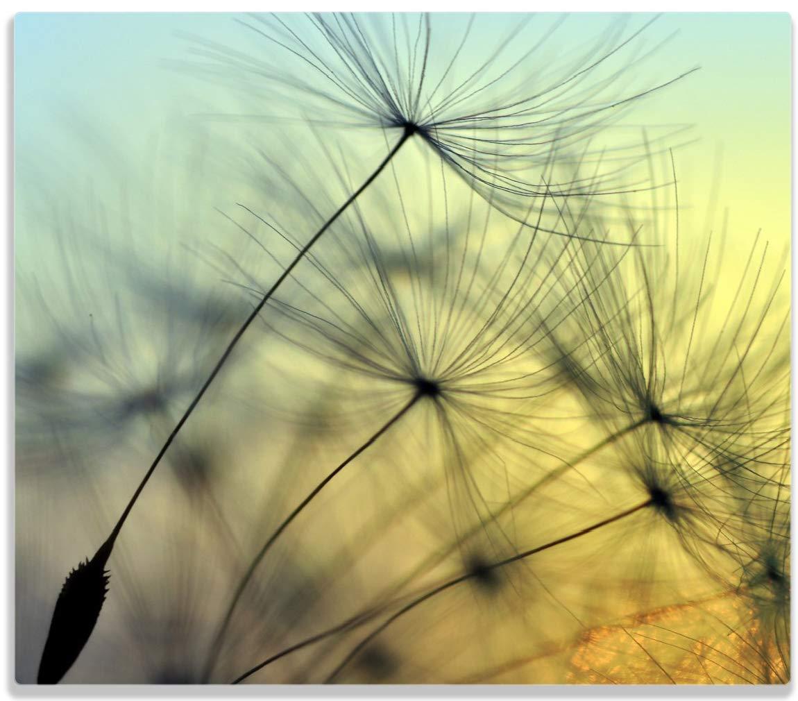 Wallario Herdabdeckplatte/Spitzschutz aus Glas, 1-teilig, 60x52cm, für Ceran- und Induktionsherde, Samen der Pusteblume in Nahaufnahme vor Blauem Himmel posterdepot