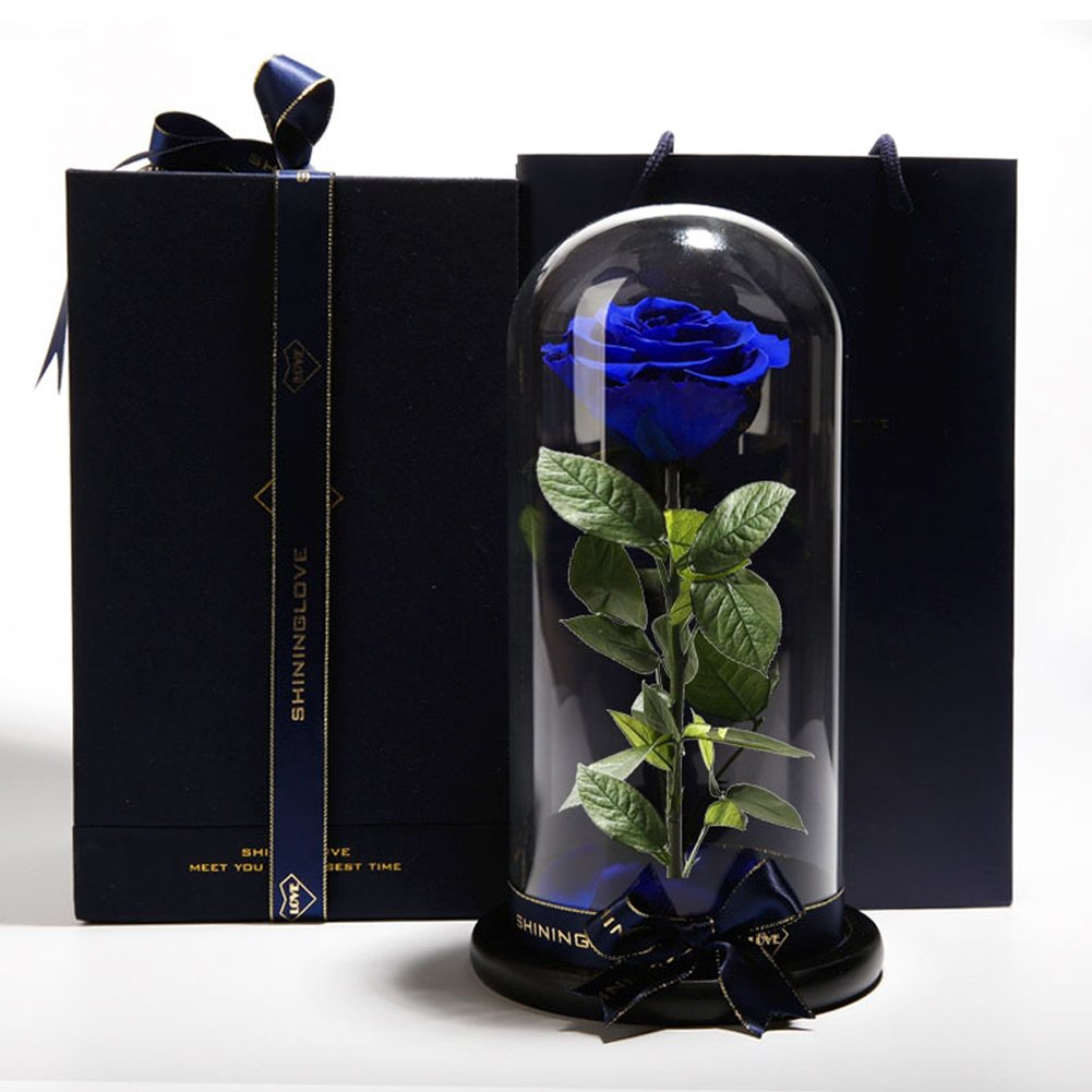 Eternalフラワーガラスカバー人工ローズPreserved Beauty and the Beast