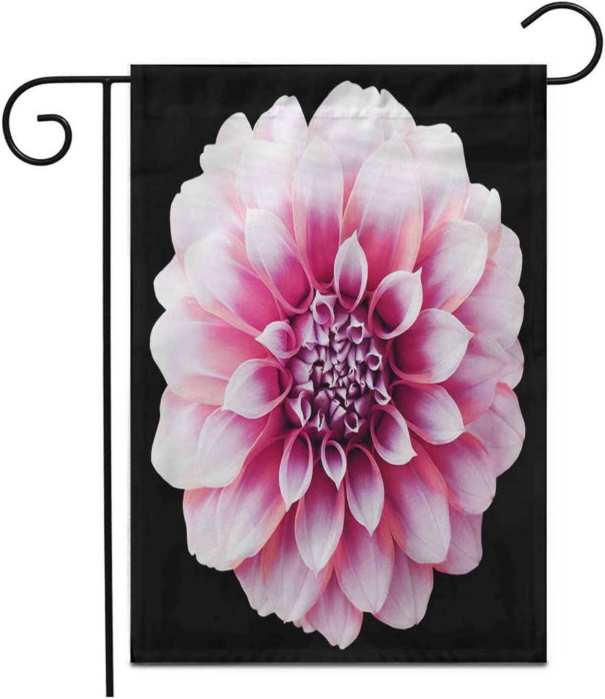 "Adowyee 28""x 40"" Garden Flag Dahlia Red Purple Flower Variegated Clipping Path Closeup No Outdoor Double Sided Decorative House Yard Flags"