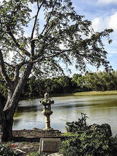 Imagekind Wall Art Print Entitled Morikami Japanese Gardens Florida 1 By  Ginette Callaway | 8 X