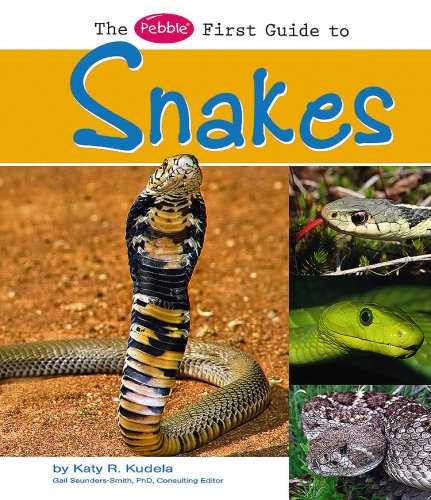 Download The Pebble First Guide to Snakes (Pebble First Guides) pdf