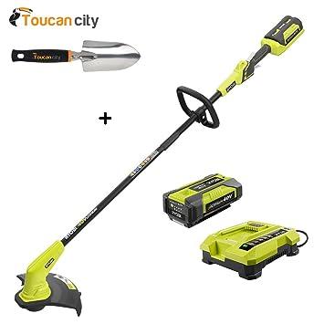 Amazon com : Toucan City RYOBI 40-Volt Lithium-Ion Cordless
