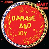 Damage and Joy [Musikkassette]