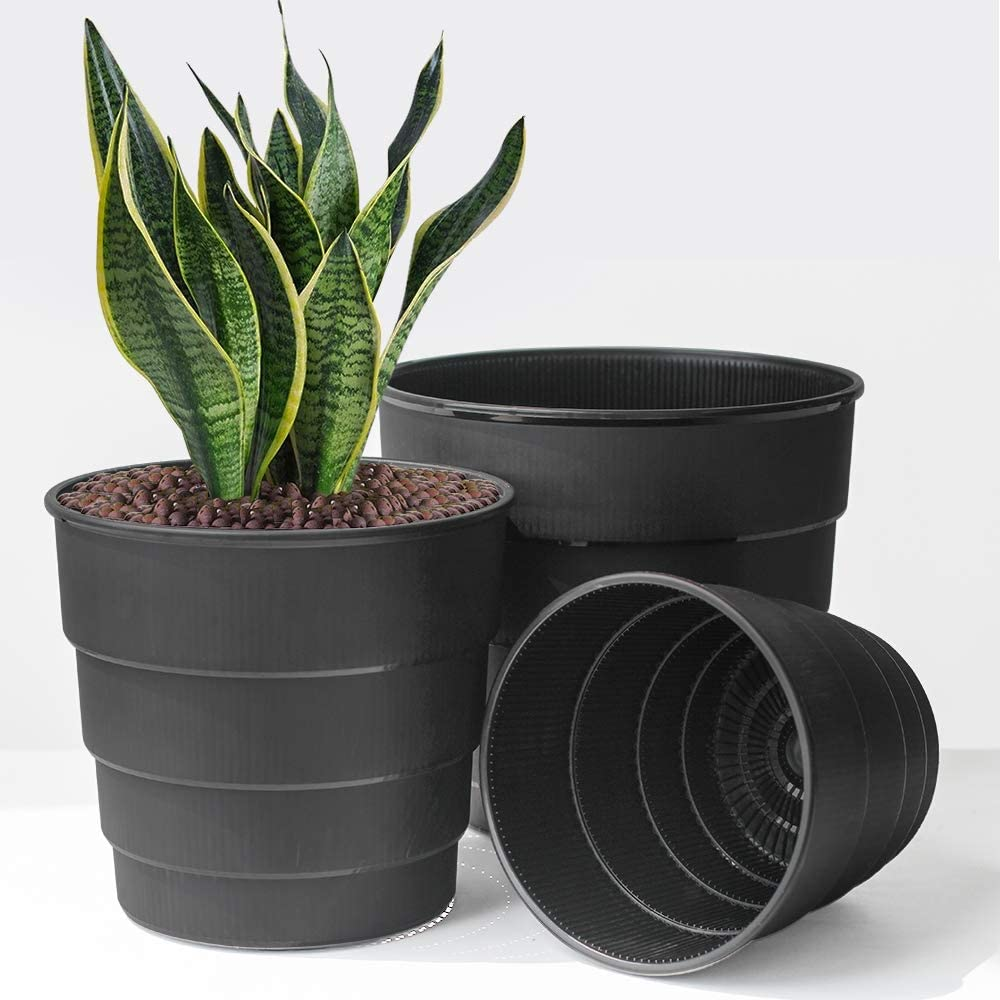 Meshpot 10 Inch Orchid Pot,Set of 2 Plastic Planter with Saucers,Flower Plant Pot Garden Pot with Drainage for All House Plants,Snake Plants,Herbs,Succulents and Cactus