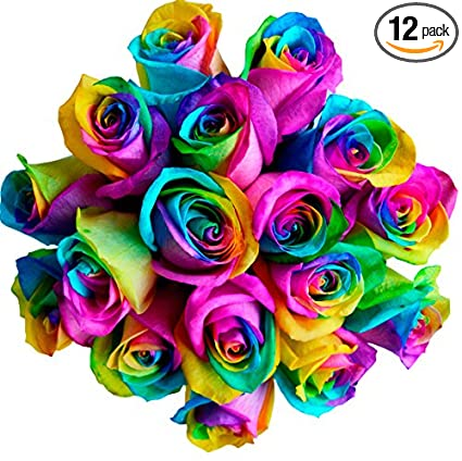 Fresh Rainbow Roses Bouquet by Flower Explosion , 12 Stems