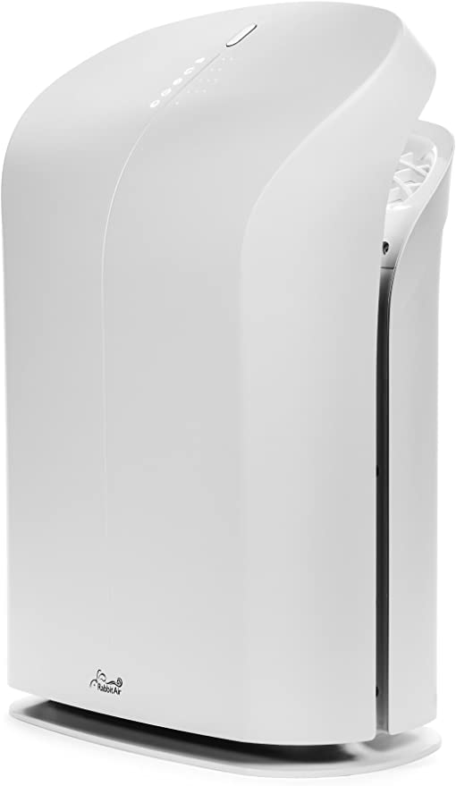 Rabbit Air BioGS 2.0 Ultra Quiet HEPA Air Purifier (SPA-550A White)