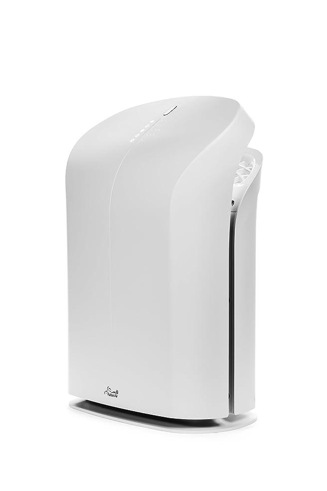 minusa2 ultra quiet hepa air purifier bcrf special edition