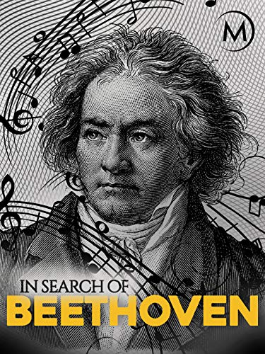 In Search of Beethoven (21 Piece Coffee)