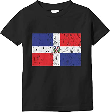 Amdesco Dominican Republic Flag Toddler Raglan Shirt