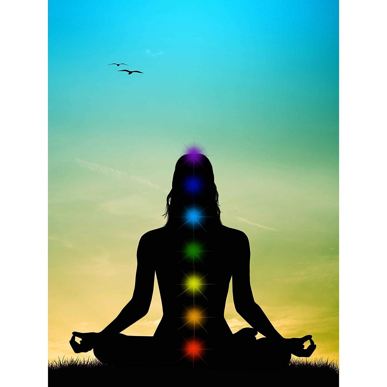 PAINTING ILLUSTRATION BUDDHIST LOTUS CHAKRAS MEDITATION ART AFFICHE PRINT POSTER MP5162B