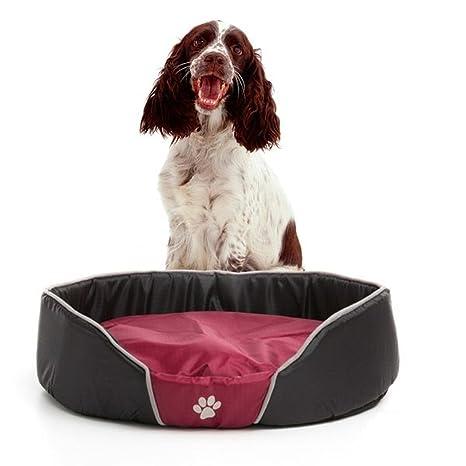 Pet Prior Cama para perro Canasta para perro Espacio para dormir con almohadas para el lugar
