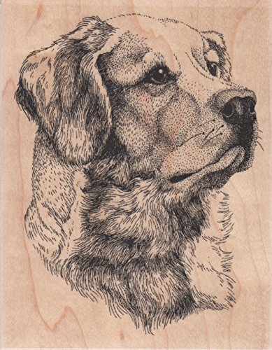 Golden Retriever Dog Wood Mounted Rubber Stamp (H7007)