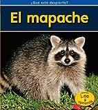 El mapache (¿Qué está despierto?) (Spanish Edition)