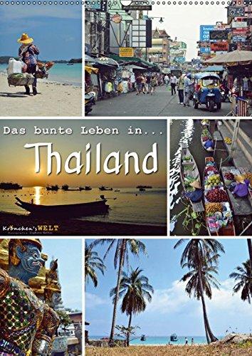 Das bunte Leben in Thailand (Tischkalender 2019 DIN A5 hoch): Eine Reise durch Thailand... (Planer, 14 Seiten ) (CALVENDO Orte) 3669708405 Asien Backpack Bangkok